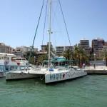 Katamaran im Hafen Palma