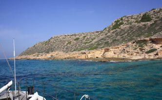 Katamaran Mallorca News