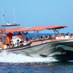 Speedboat Cabrera